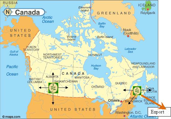 Technico Technologies Inc. Canada
